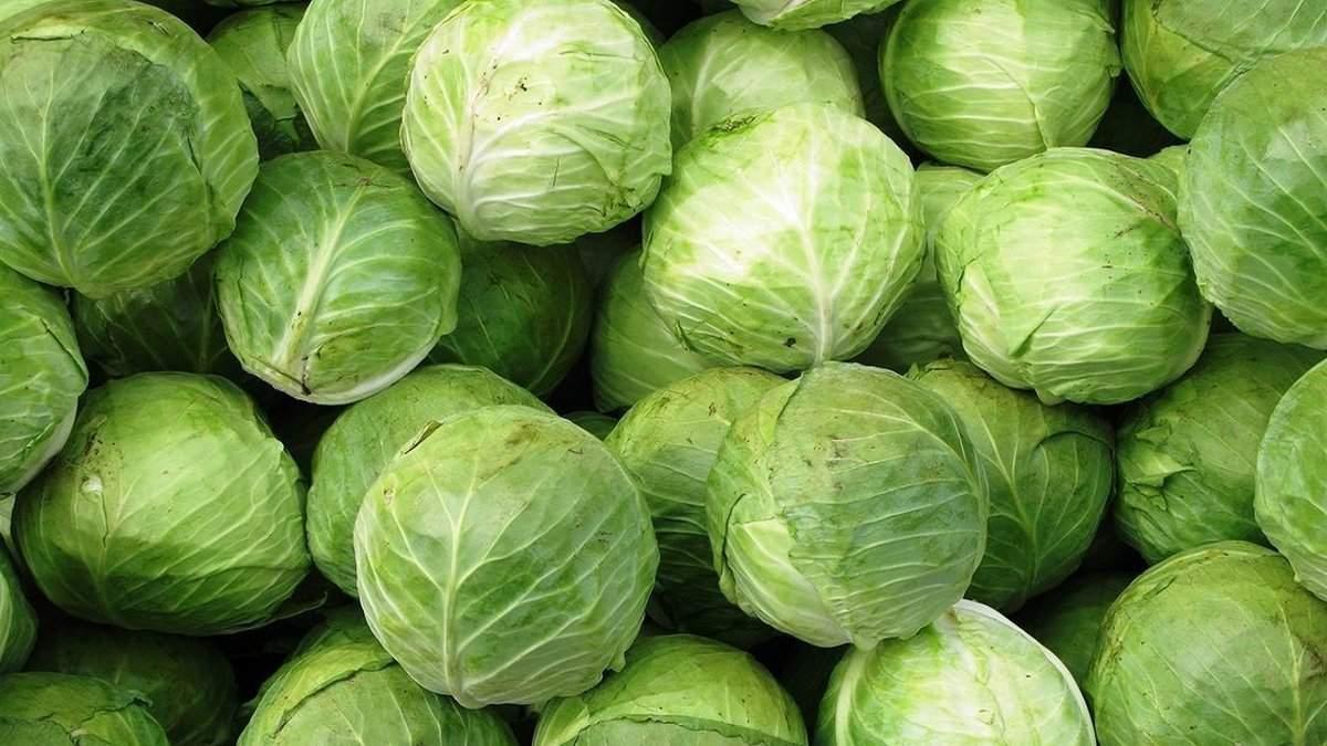 Сезонні продукти лютого: чим краще харчуватись взимку