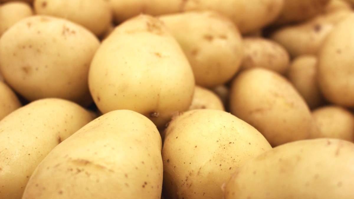Чим корисна молода картопля і як приготувати