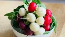 Редиска: користь, шкода, калорії та застосування в кулінарії