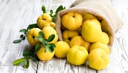 Айва – як правильно їсти, користь і шкода