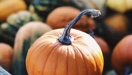 Тыква: польза, вред, калорийность и применение в гастрономии
