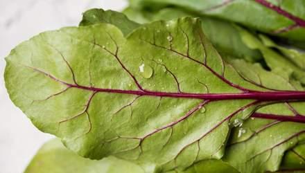 Мангольд: калорійність, шкода та корисні властивості