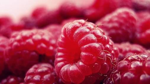 Сезон малини: цікаві факти та корисні властивості ягоди