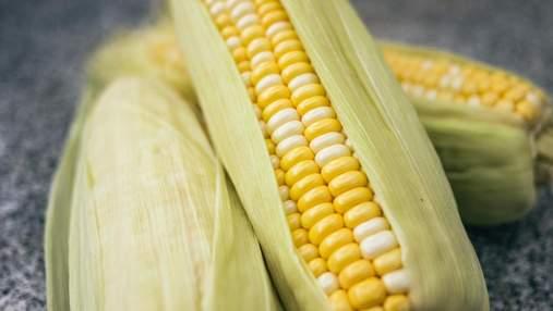 Як правильно варити кукурудзу в домашніх умовах: корисні поради