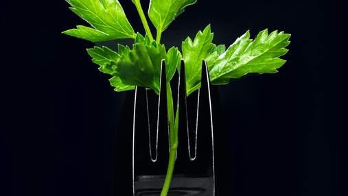 Петрушка проти кінзи: як правильно обрати зелень – поради