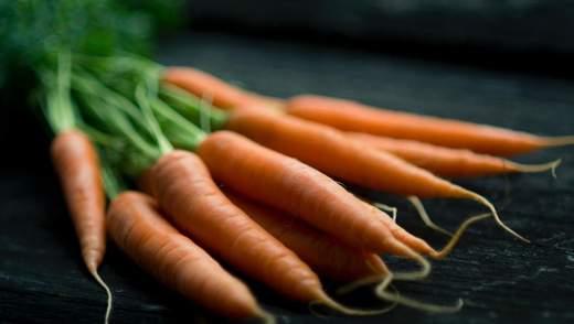 Морква: користь, шкода, калорійність та застосування в кулінарії